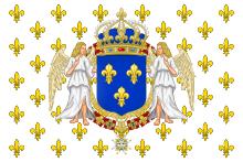 drapeau du roi